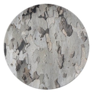 London Plane Tree Plat Texture Pattern Nature Dinner Plate