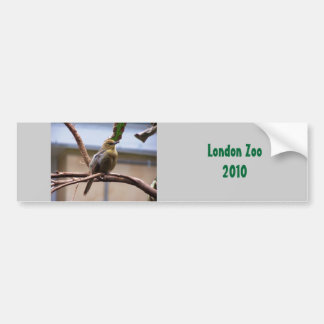 London Zoo bird Bumper Sticker