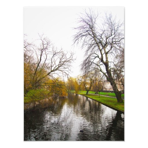 london's park photo print