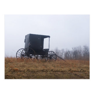 Lone Amish Buggy in Misty Meadow Postcard