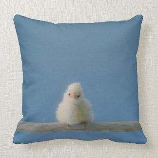 Lone Baby Pet Chicken Sitting on a Perch Throw Pillow