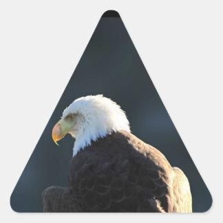 Lone Bald Eagle Triangle Sticker