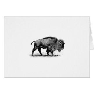 lone bison card