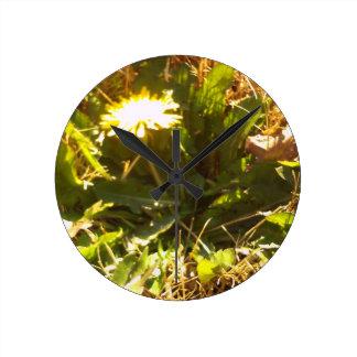 Lone Dandelion Wall Clock