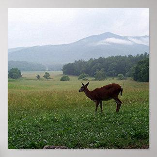Lone Deer Poster