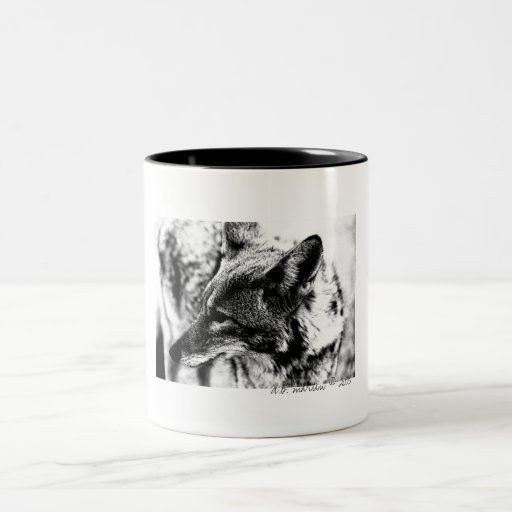 Lone Desert Coyote, D.B. Martin  2005 Mugs