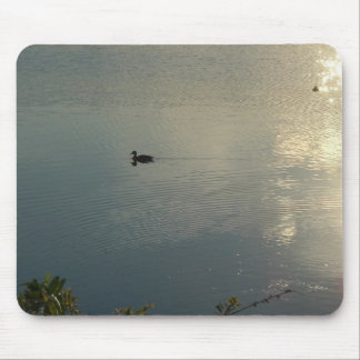 Lone Duck Mouse Pads