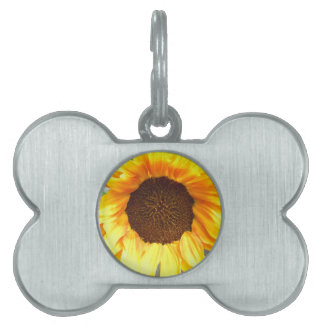 Lone Fiery Sunflower Pet Name Tag