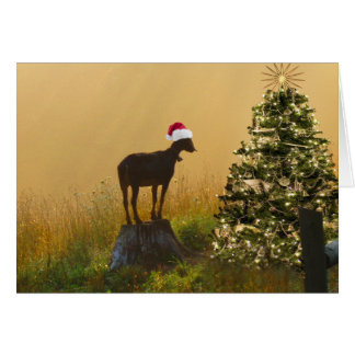 Lone Goat Marvels At Christmas Tree Cards
