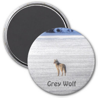 Lone Grey Wolf Standing on A Frozen Lake 3 Inch Round Magnet