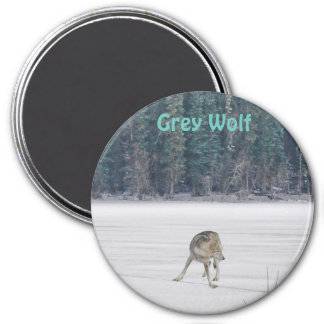 Lone Grey Wolf Standing on A Frozen Lake I 3 Inch Round Magnet