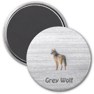 Lone Grey Wolf Standing on A Frozen Lake Magnet