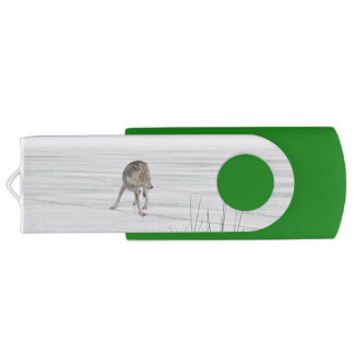 Lone Grey Wolf Standing on A Frozen Lake Swivel USB 2.0 Flash Drive
