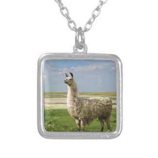 Lone guardian of the prairie silver plated necklace