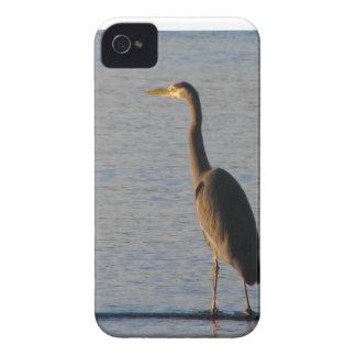 Lone Heron Case-Mate iPhone 4 Cases