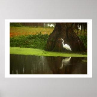 Lone Heron - Louisiana Swamp Scene Poster