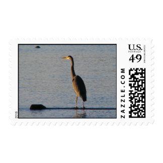 Lone Heron Postage