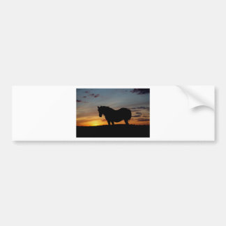 Lone horse at Sunset on the prairies Bumper Sticker