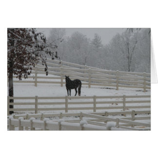 Lone Horse Stationery Note Card