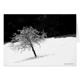 Lone Icy Tree in Winter Card