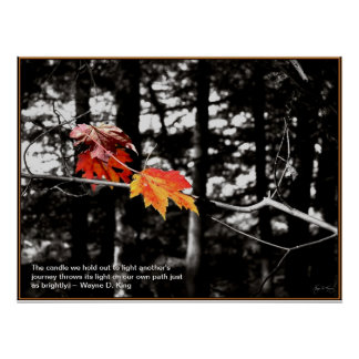 Lone Leaves Poster
