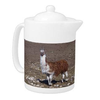 Lone Lllama Teapot