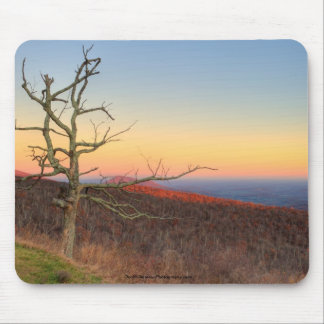 Lone Mountain Tree in Fall Mouse Pad