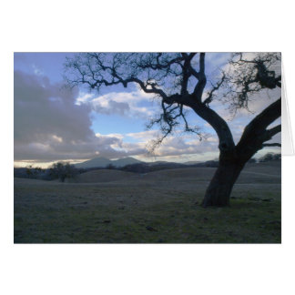 Lone Oak overlooking Mt. Diablo in Winter Card