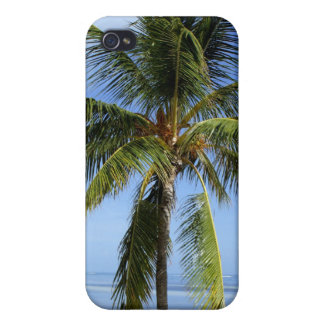 Lone Palm Cover For iPhone 4