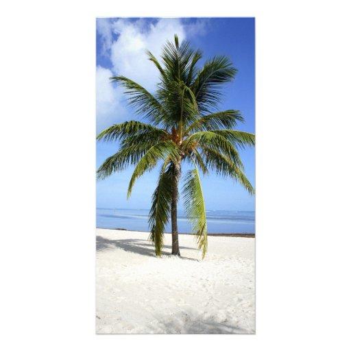 Lone Palm Photo Greeting Card
