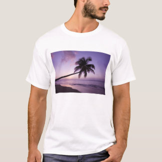 Lone palm tree at sunset, Coconut Grove beach 2 T-Shirt