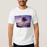 Lone palm tree at sunset, Coconut Grove beach 2 T Shirts