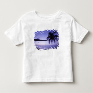 Lone palm tree at sunset, Coconut Grove beach 3 Toddler T-shirt