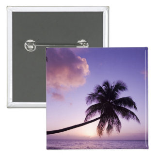 Lone palm tree at sunset, Coconut Grove beach Pinback Button