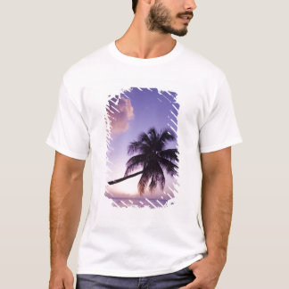 Lone palm tree at sunset, Coconut Grove beach T-Shirt