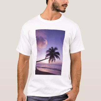 Lone palm tree at sunset, Coconut Grove beach T-Shirt