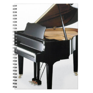 lone piano fun spiral notebook
