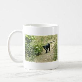 Lone Pig Mug