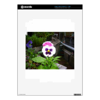 Lone Purple and White Pansy Decals For The iPad 2