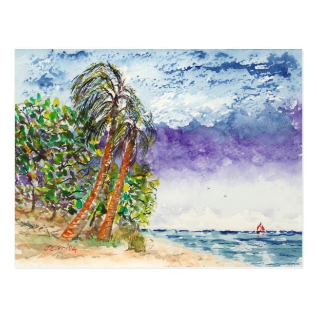 Lone Sail Boat & Palm Trees North Carolina Beach Postcard