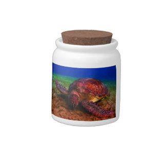 Lone Sea Turtle Candy Jar