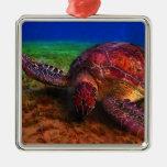 Lone Sea Turtle Ornament
