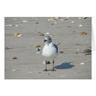 Lone Seagull Notecard Stationery Note Card