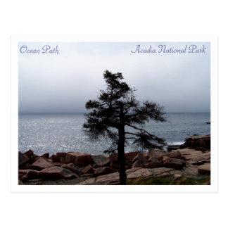 Lone Sentinel on the Ocean Path Postcard