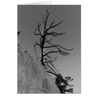 Lone Sky Tree, greeting card by Ma... - Customized