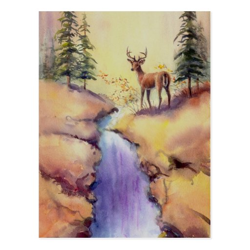 LONE STAG by SHARON SHARPE Post Cards
