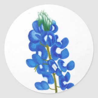 Lone Star Bluebonnet Sticker