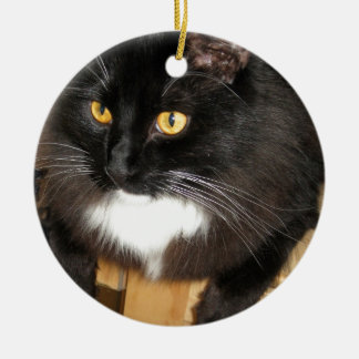 Lone Star Cat Perching on a Table, photograph Ceramic Ornament