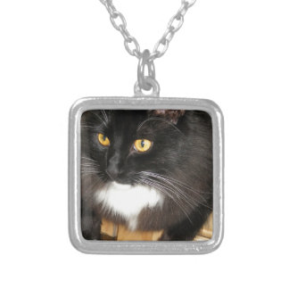 Lone Star Cat Perching on a Table, photograph Necklaces