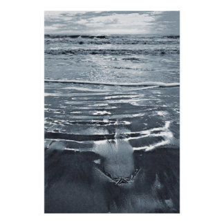 Lone Starfish on the Beach Poster